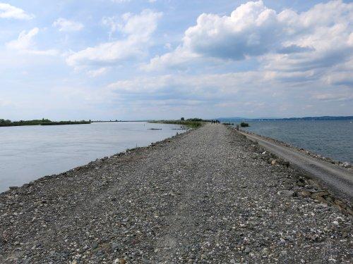 Rheinmuendung.jpg