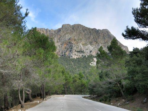 Mallorca2013PuigMajor.jpg
