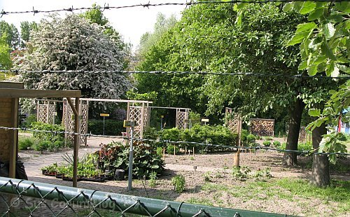 Lelystad2010Tauschgarten.jpg