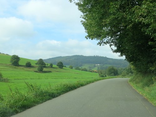 Odenwald1.jpg
