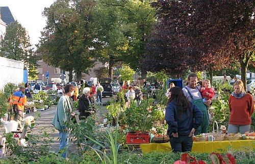 PflanzenflohmarktSeeheim_Sept2009.jpg