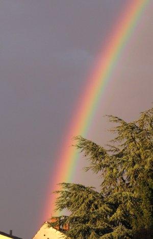 Regenbogen2009.jpg