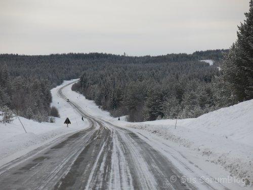 Schweden2017_Landschaft.jpg