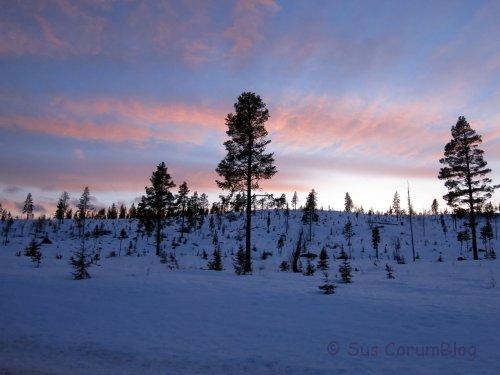 Schweden2017_Sonnenuntergang.jpg