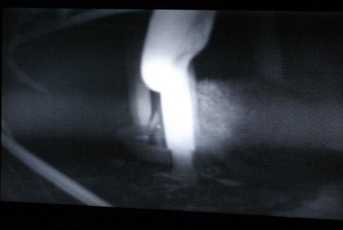 IgelTV2011.jpg