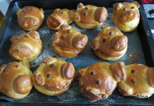 Gluecksschweinchen.jpg