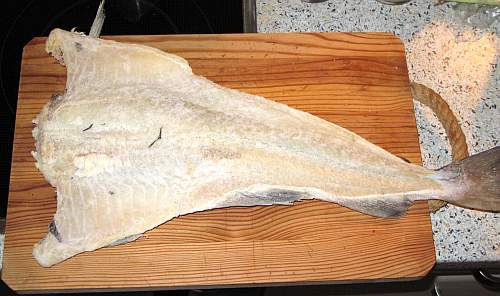 Bacalhau.jpg