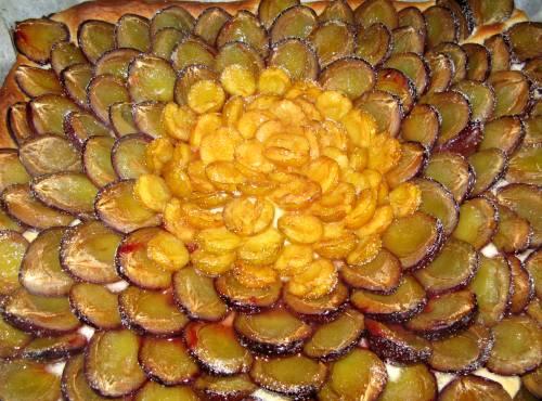 Zwetschgenkuchen2008.jpg